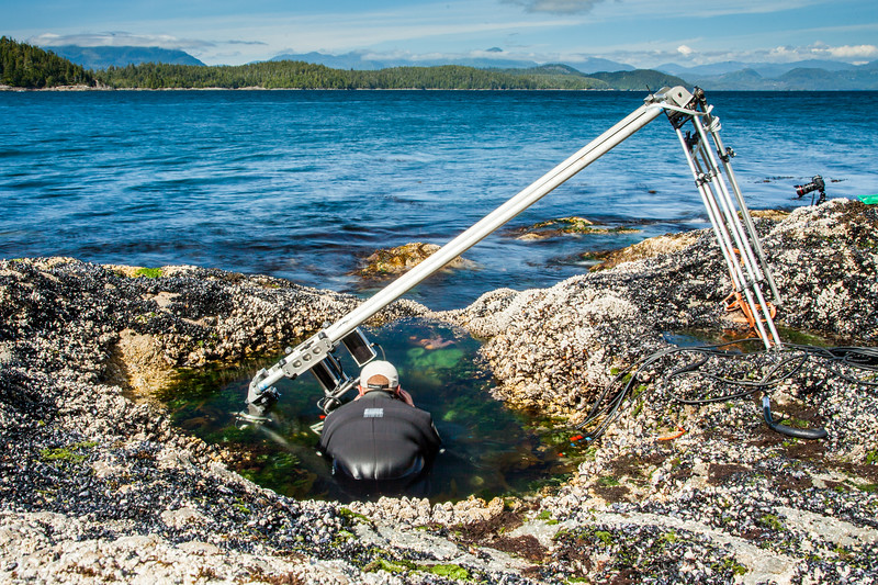 Using a specialist motion control rig to film underwater timelapse in a rockpool for BBC Blue Planet II, Vancouver island, British Columbia.