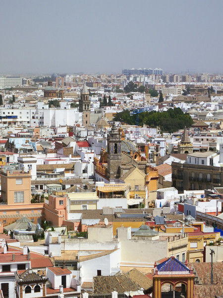 Spain 2012-1360.jpg