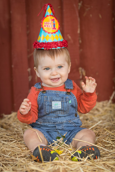 Carter's 1st Birthday