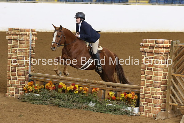 2019 House Mountain Spring Horse Show -- Sunday -- Coliseum Morning Classes