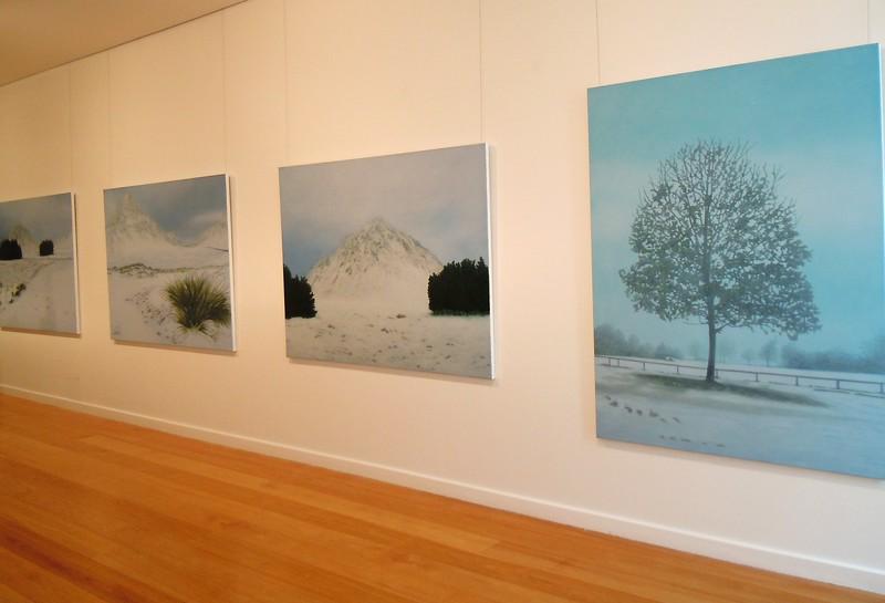 2010 New Paintings , Tim Olsen Gallery, Sydney