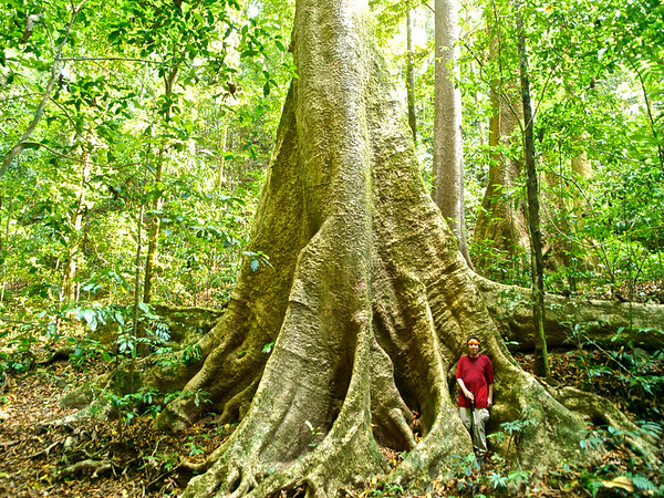 Namtha Jungle Trek