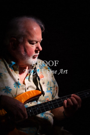 Vic Wooten Classic 5 String Painting