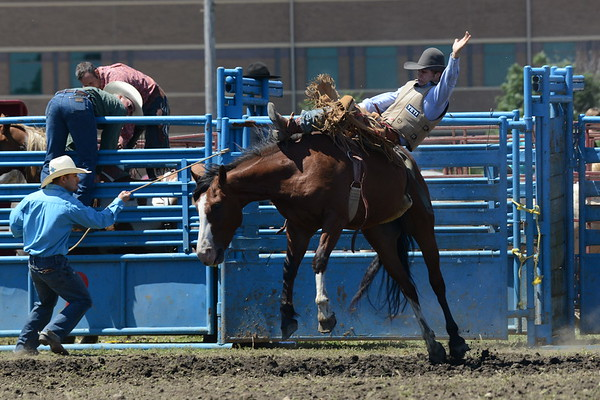 DuPage County Fair 2017 - Rodeo