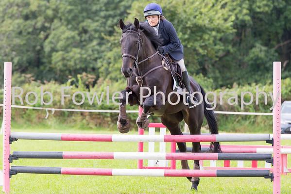 Horse 90cm