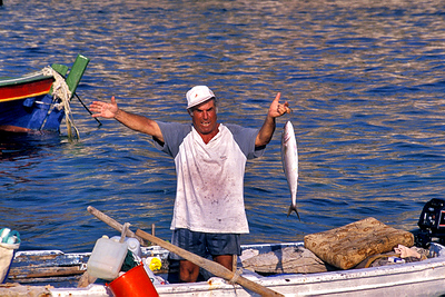 דייג קרוב.jpg