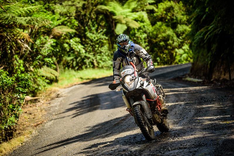 2018 KTM New Zealand Adventure Rallye - Northland (757).jpg