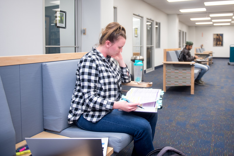 Islander student Emily Arthur studies for her nursing exam in the Mary and Jeff Bell Library.