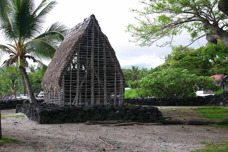 big_island0132.jpg