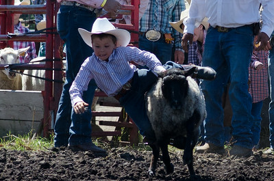 Mutton Busting Saturday 2014