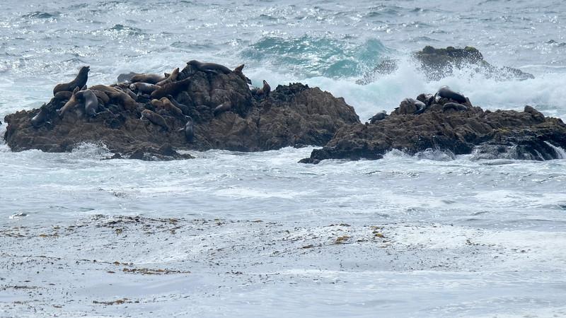California Day 3 Monterey 05-29-2017 105.JPG