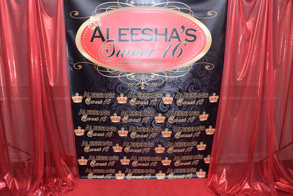 Aleesha Sweet 16