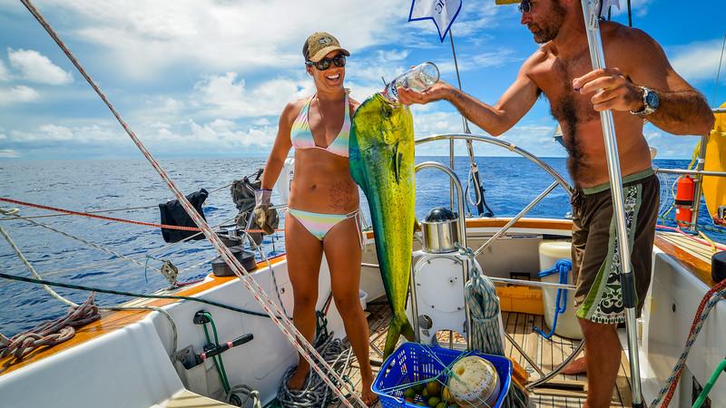 Mahi Mahi sailboat fish tacos Pacific Ocean-8.jpg