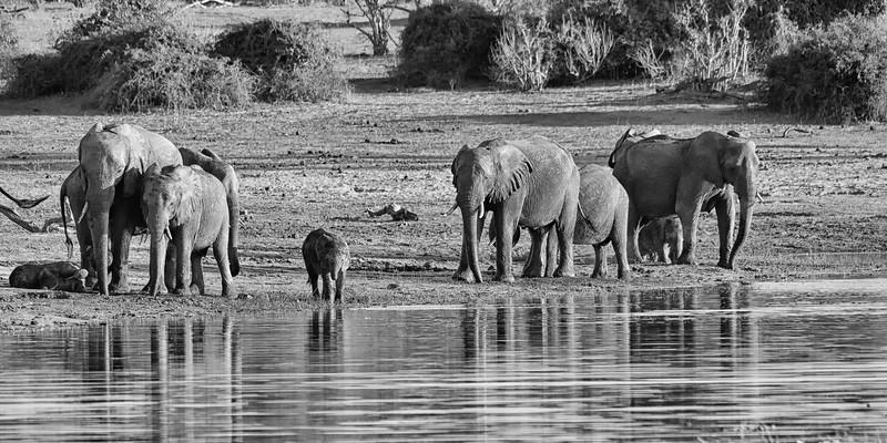 Africa-31.jpg