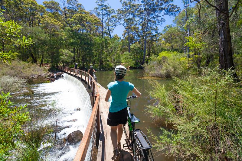 Mountain Biking on The Pines Trails, Margaret River, Western Australia