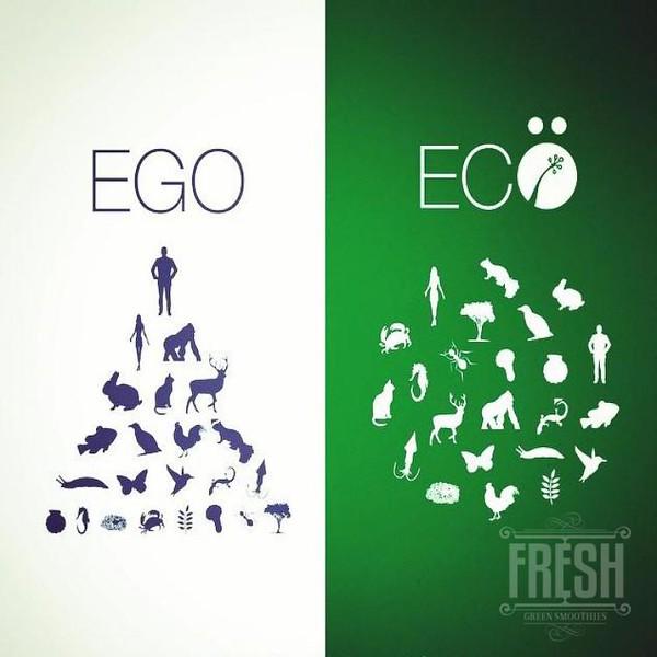 conscious-FreshGreenSmoothies_com-Vegan-Intelligent-Compassionate-raworganicvegan-plantbased-greensmoothies5184.jpg
