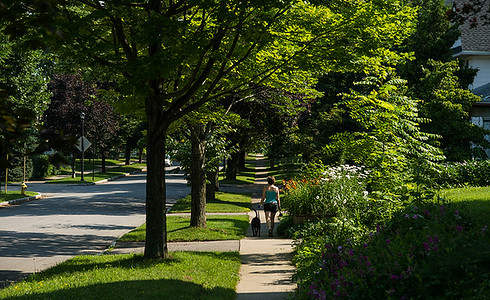City of Rochester's Highland Park neighborhood photographed July 3, 2013. // photo by