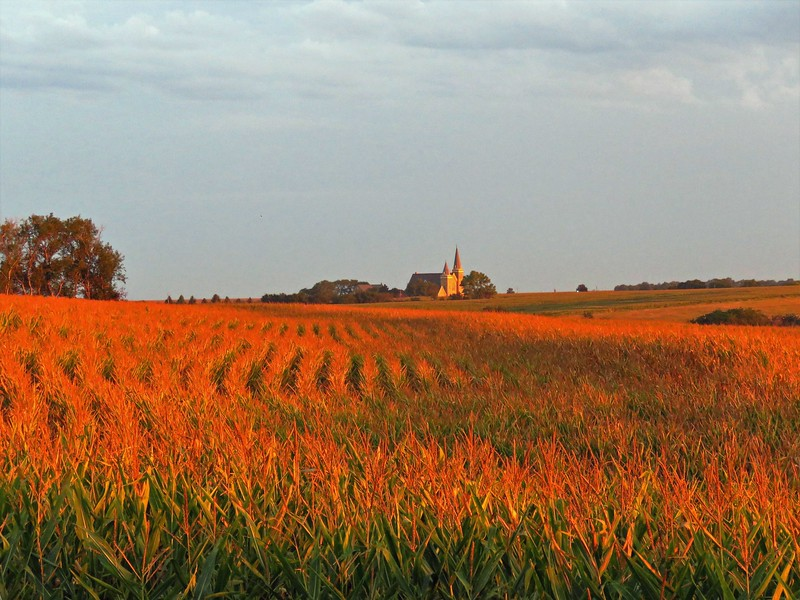 Cathedral in the Cornfields, Gage Co., NE (2).JPG