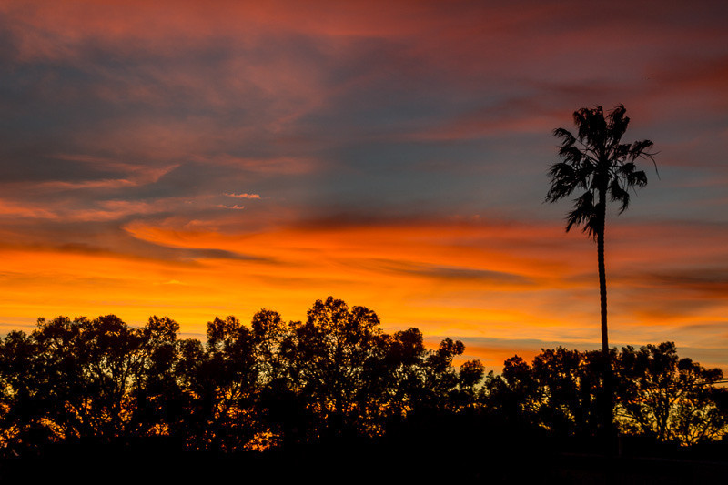jan 7 - L A sunset.jpg