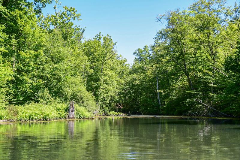 *2018-07-07 Monksville Reservoir Kayaking-untitled (1 of 256)-001.jpg