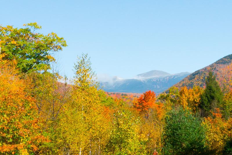 Fall Foliage in New England