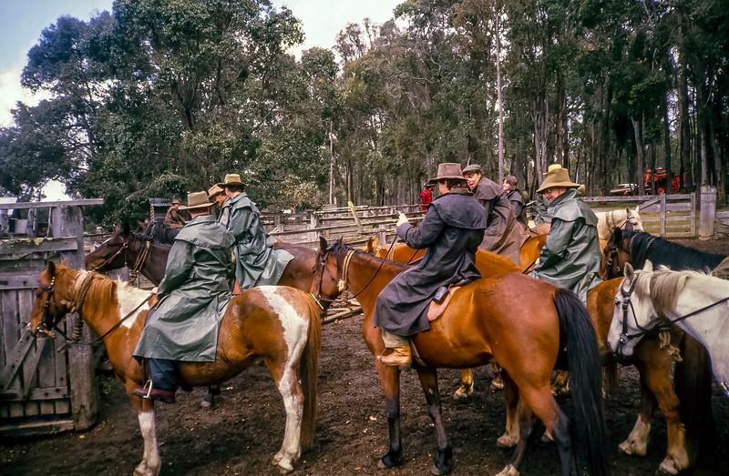 Shannon Horseback Adventure 1987