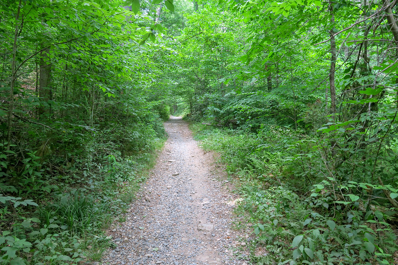 Black Mountain Trail -- 2,180'