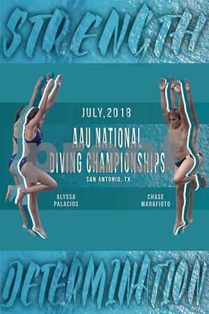 Sports Art - Diving