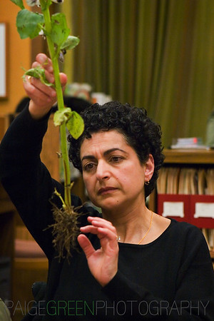 Soil Workshop