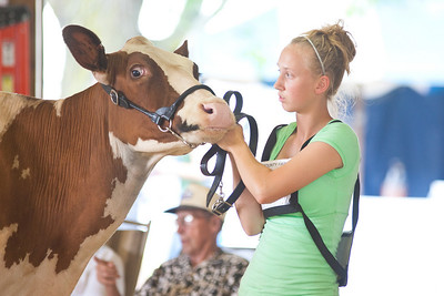 2009 Open & Jr. Dairy Shows