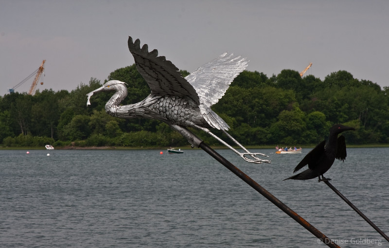 Great blue heron in flight... sculptures by Walter Liff of Steeling Nature