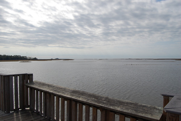 Journal Site 173: Shell Mound, Lower Suwannee NWR, Florida - Dec. 30, 2010