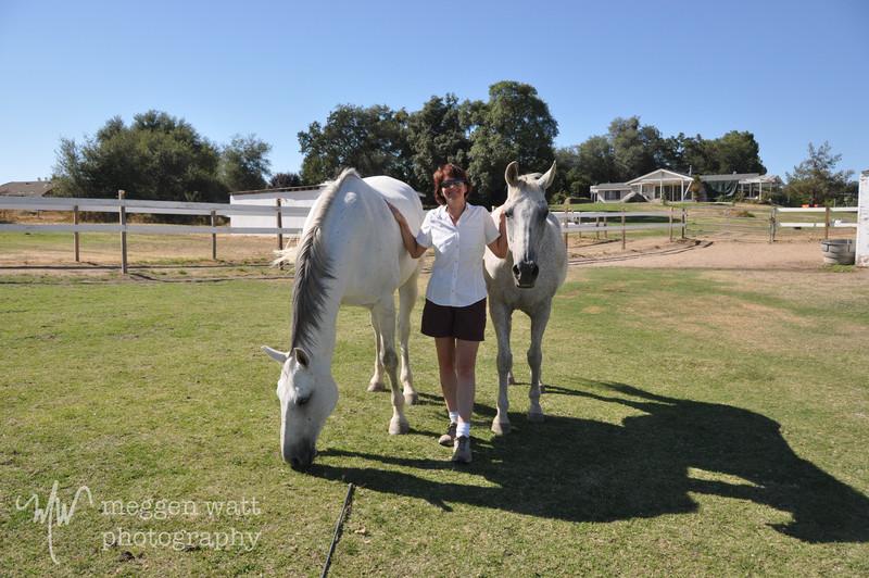 EB&Horses-164.jpg