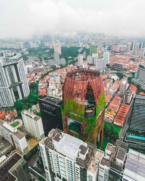 Artilect Spring City Scapes Singapore (6 of 7).jpg