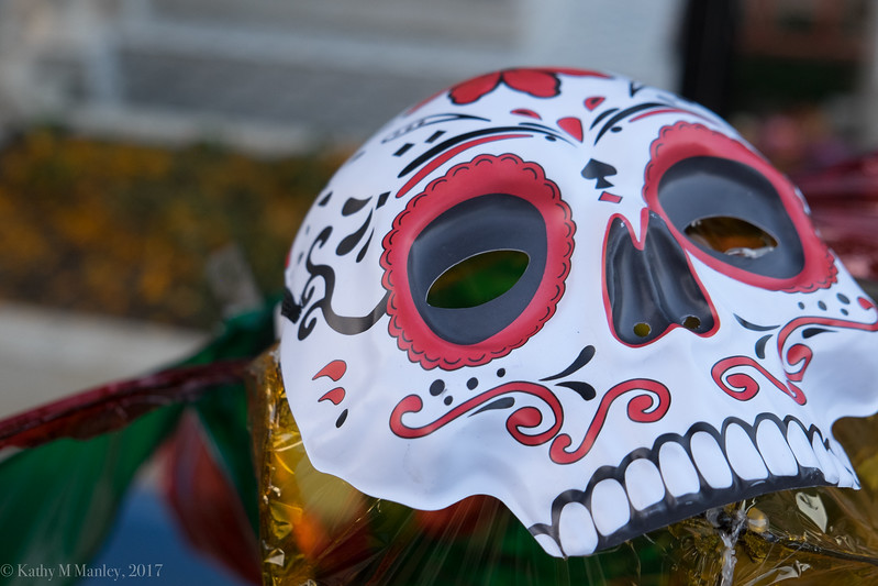 dayofthedead-9851.jpg