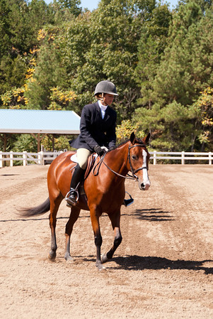 Class 86 - Large Hunter Pleasure Pony, Sr., (16-19)
