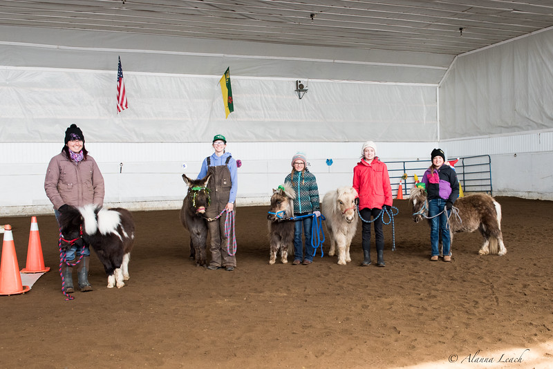LOVEquine Therapy and Horsemanship