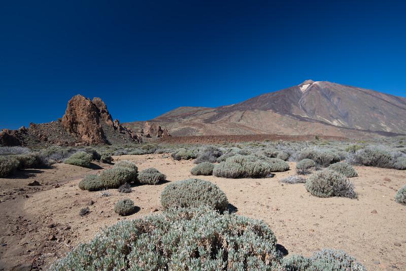 Canary Island-21.jpg