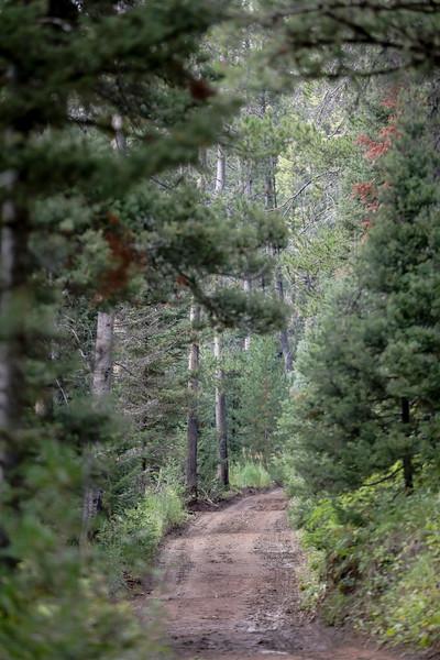 Wyoming Range 100-4774.jpg
