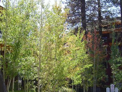 2005 - September Lake Tahoe