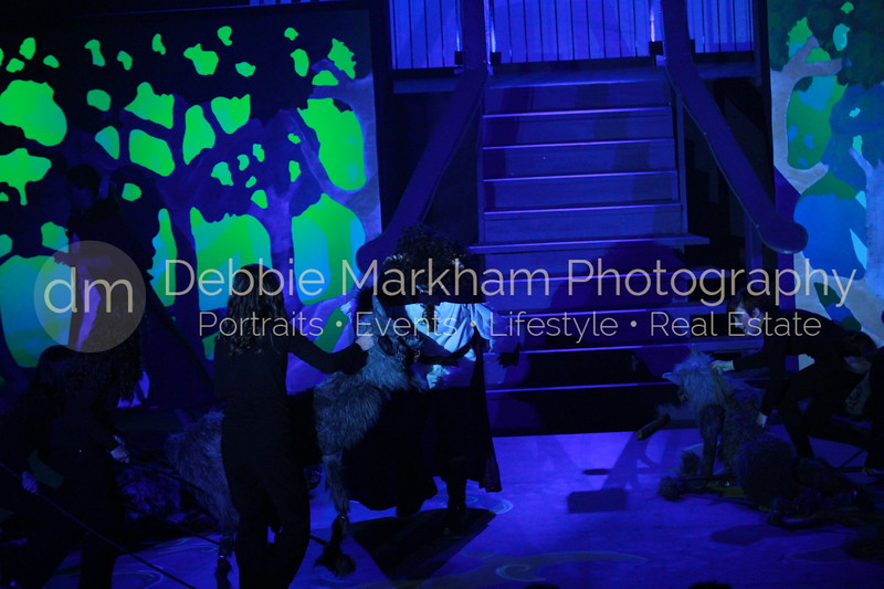DebbieMarkhamPhoto-Saturday April 6-Beauty and the Beast933_.JPG