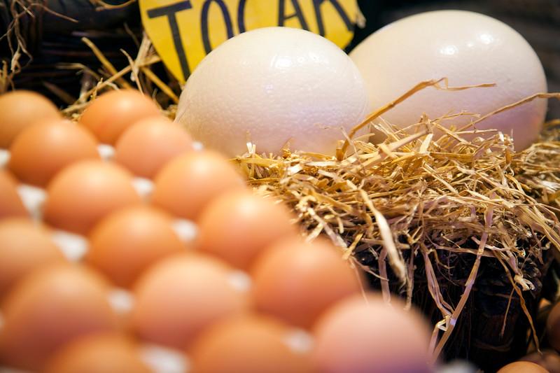 Chicken and ostrich eggs for sale, Boqueria market, town of Barcelona, autonomous commnunity of Catalonia, northeastern Spain