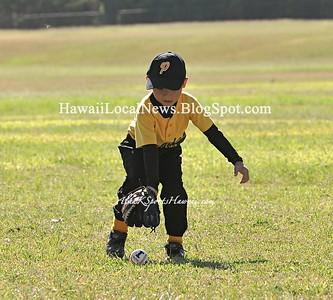 Pee Wee Baseball