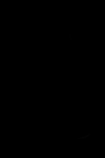 TDP03567.jpg