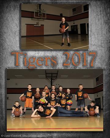 Tiger Memory Mates 2017