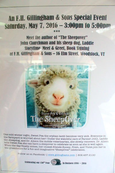 "Gillingham's ""The Sheep Over"", Author Event"