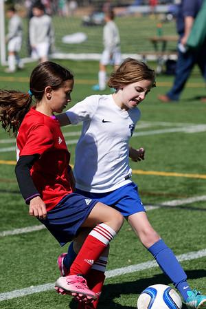2015-05-23 - Wellesley Invitational - BBA vs. NEFC