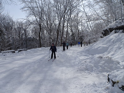 29 February Skiing on Mont Royal 2020
