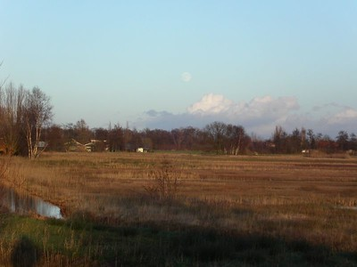 25 December around the Polder