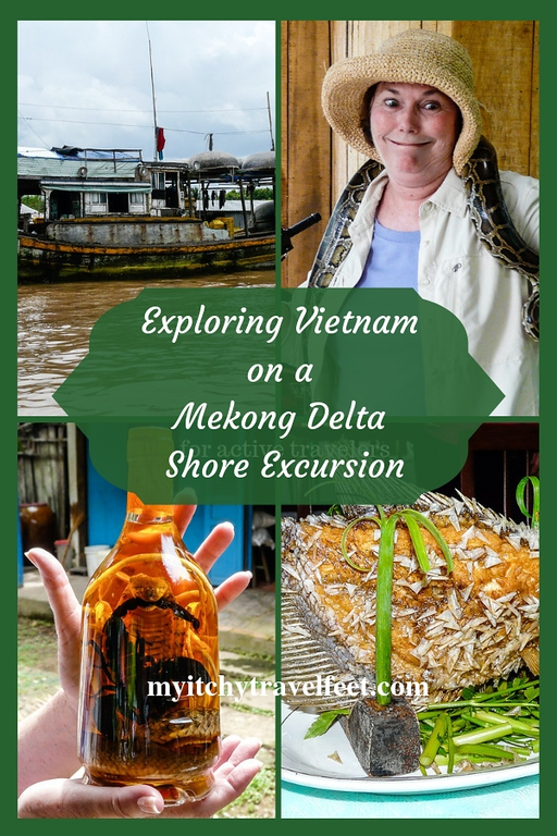 Exploring Vietnam on a Mekong Delta Shore Excursion